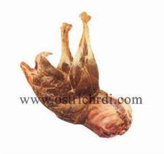 فروش گوشت و کلیه محصولات شترمرغ