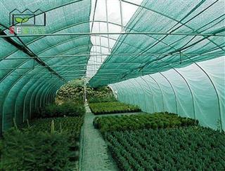 سایبان سبز گلخانه - شید گلخانه ای