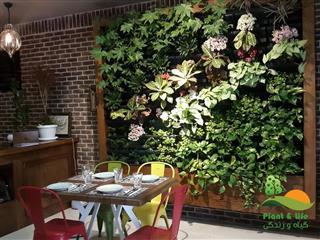 باغ بام و دیوار سبز (گیاه وزندگی)