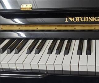 پیانو نوردیسکا