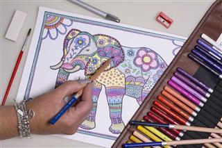 آموزش تخصصی طراحی و نقاشی