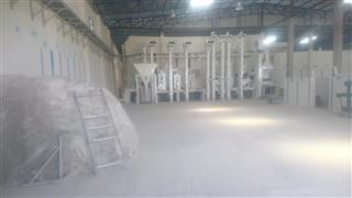 تولید و فروش برنج طارم (دم سیاه، سنگی، هاشمی)